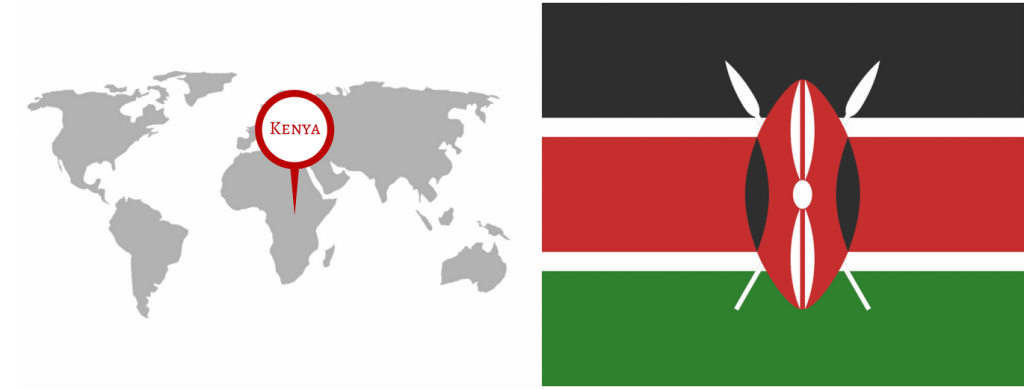 Country Ambassador Program – Insights from Kenya